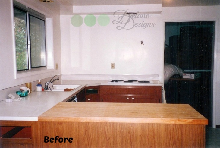 Kitchen Renovation Before 1 Delano Designs